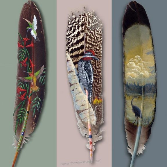 drawings on feather 02 in Drawings on feather? Creative Art Medium