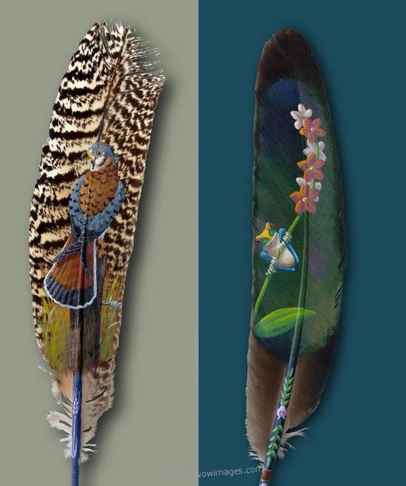 drawings on feather 05 in Drawings on feather? Creative Art Medium