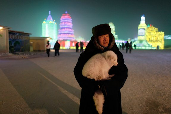 harbin ice festival 24 in Harbin Ice and Snow Sculpture Festival