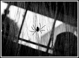22 Spooky and Creepy Black and White Photos