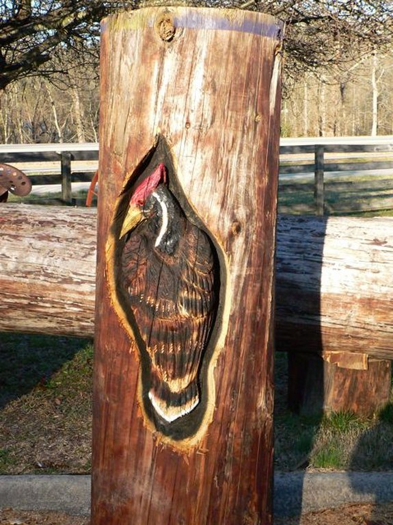 Awesome chainsaw wooden art