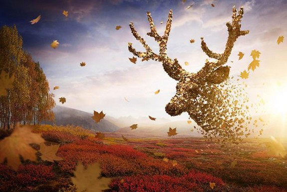 creative photo manipulations 06 in Top 20 Photo manipulated Scenes