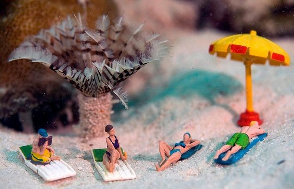 Miniature Underwater World; Hilarious Toy Scenes