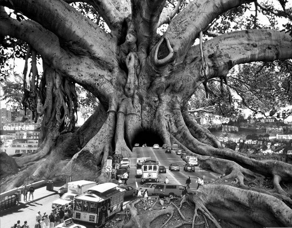 whimsically surreal photo montages 01 in Whimsically Surreal Photo Montages by Thomas Barbéy